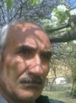 ragif, 58  , Shamakhi
