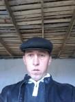 oleg, 38  , Almaty