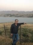 Saeid, 44  , Chislehurst