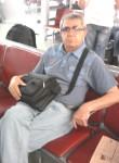 Putnik, 59  , Bila Tserkva