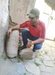 Maks, 26  , Yerevan