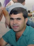 Merdan, 38  , Turkmenbasy