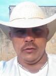 Paulo, 35  , Pirapozinho