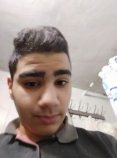 نبتتل, 19, Palestine, Qabatiyah