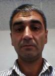 Elseve, 44  , Salyan