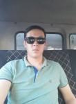 Atabek, 33  , Arys