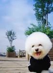 熊猫111, 30, Beijing