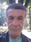 Steva ciric, 60  , Novi Sad