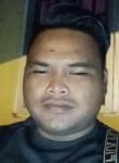 Apis, 24  , Taiping