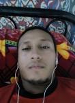 الباشاعلي, 25  , Ajman