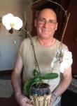 Mário, 61  , Cacem