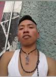 Alejandro, 21  , San Miguel Xico Viejo