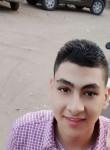 Shehab, 22  , Cairo