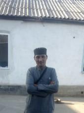Privet, 37, Kyrgyzstan, Bishkek