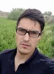 Bingo, 23  , Samarqand