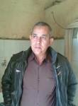 Shehata, 58  , Cairo