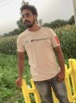 Rocky, 28  , Agra