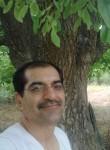 abdullah1347, 46  , Shiraz