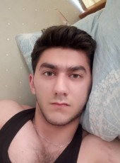 faridfox, 21, Azerbaijan, Baku