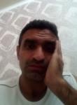 Seyed, 31  , Bishkek