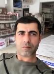 Baran21, 35 лет, Diyarbakır