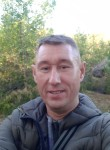 Sergey, 43, Saint Petersburg