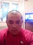 Altyn, 35, Tomsk