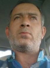Talat, 45, Turkey, Ankara