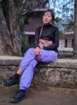 Sinsicicelia, 20  , Kohima