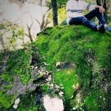 Puru, 18  , Biaora