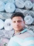 محمد عكاشه, 35  , Alexandria