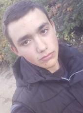 Vladislav, 19, Ukraine, Kropivnickij