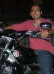 Harmol, 30  , New Delhi